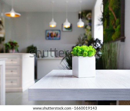 Coffee and flowers concept. Green moss in white flower pot on white table in cafe plants decorated