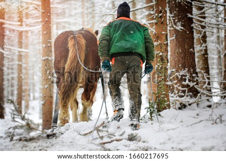 Hard work of man and horse in inaccessible mountain areas.Slovak mountains #1660217695