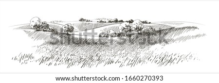 Green grass field on small hills. Meadow, alkali, lye, grassland, pommel, lea, pasturage,  farm. Rural scenery landscape panorama of countryside pastures. Vector sketch illustration #1660270393