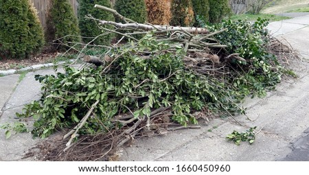 Pile of yard cleanup clippings. Branches and limbs. Royalty-Free Stock Photo #1660450960