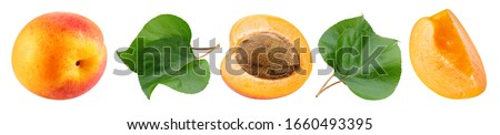 Apricot Collection. Apricot fruits with green leaf. Apricot isolated on white background. Apricot clipping Path. #1660493395