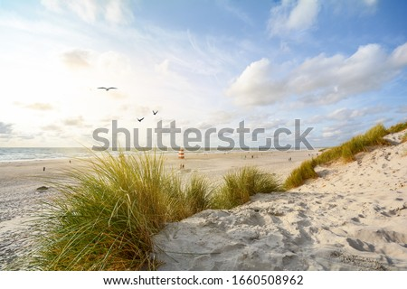 View to beautiful landscape with beach and sand dunes near Henne Strand, North sea coast landscape Jutland Denmark #1660508962