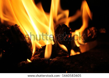 Fire pictures while camping in the mountains