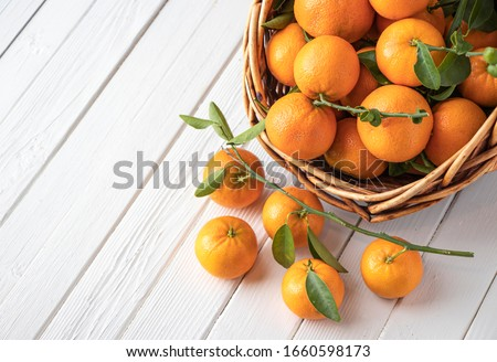 Orange fruit with green leaves on the white wood.  Home gardening. Mandarine oranges. Tangerine  oranges. Orange color. #1660598173