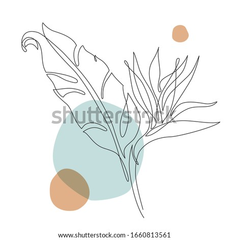 Abstract one line art tropical flower. Strelitzia contour drawing. Minimal art flower on geometric shapes backgroud. Modern black and white illustration. Elegant continuous line drawing #1660813561