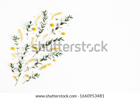 Flowers composition. Yellow flowers, eucalyptus branches on white background. Spring concept. Flat lay, top view #1660953481