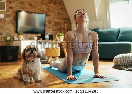 Young athletic woman in cobra pose practicing Yoga with her dog at home.  #1661104243