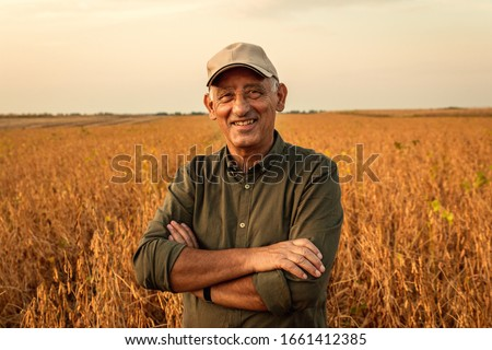 Portrait of senior farmer standing in soybean field examining crop at sunset. #1661412385
