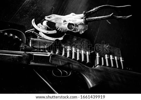 Hunter season. Hunting Trophies. Hunting equipment. Pulled the trigger of the shotgun. Cartridges shotgun or shotgun barrel #1661439919