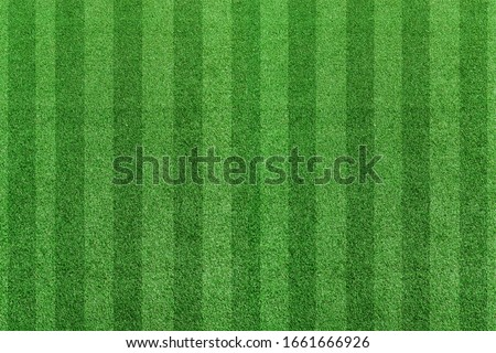 Top view stripe grass soccer field. Green lawn pattern background Royalty-Free Stock Photo #1661666926