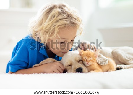 Child playing with baby dog and cat. Kids play with puppy and kitten. Little boy and American cocker spaniel on bed at home. Children and pets at home. Kid taking nap with pet. Animal care. #1661881876