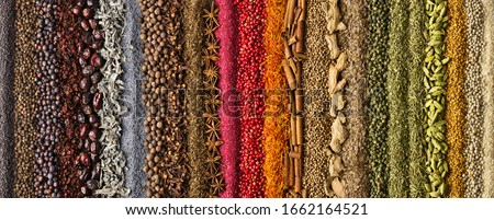 spices and herbs panoramic background. various seasonings are scattered on table.  flavoring for design of website header or food packaging. #1662164521