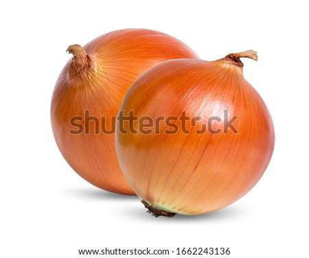 onion isolated on white background Royalty-Free Stock Photo #1662243136
