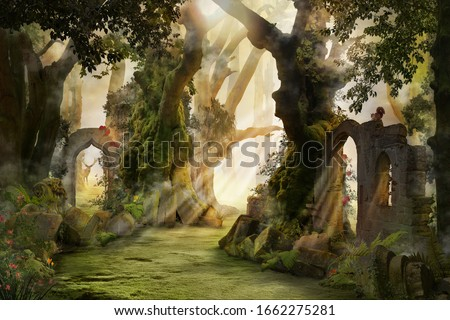 into the deep woods, atmospheric landscape with archway and ancient trees, misty and foggy mood Royalty-Free Stock Photo #1662275281