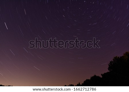 Star trails circling Polaris with tree silhouettes #1662712786