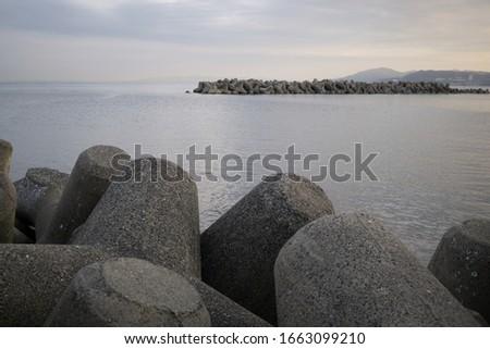 Spiky stone near the seashore #1663099210