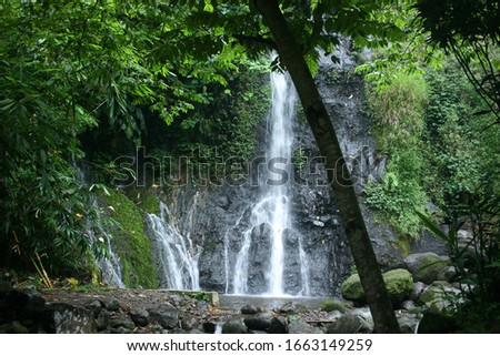 """waterfall in the middle of the forest. waterfall """"Pengantin"""" is located in Ngawi, East Java. Beautiful natural waterfall #1663149259"""