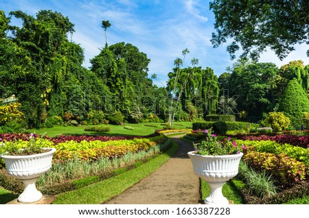 Royal Botanic Gardens, Peradeniya are about 5.5 km to the west of the city of Kandy in the Central Province of Sri Lanka. It attracts 2 million visitors annually. It is near the Mahaweli River. #1663387228