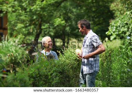 Senior man and mature men chatting over plants in garden #1663480357