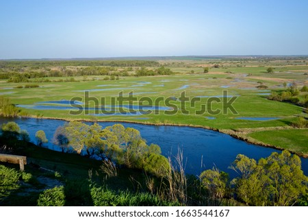 Green meadow with blue lakes on a clear, sunny day. Blue river with trees along the banks, blue sky. #1663544167