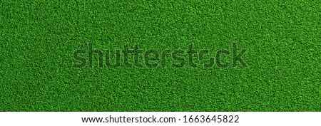 Soccer green grass as a panoramic banner background, banner size, EM 2020 Concept image #1663645822