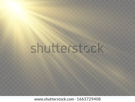 Vector transparent sunlight special lens flash light effect.front sun lens flash. Vector blur in the light of radiance. Element of decor. Horizontal stellar rays and searchlight. #1663729408
