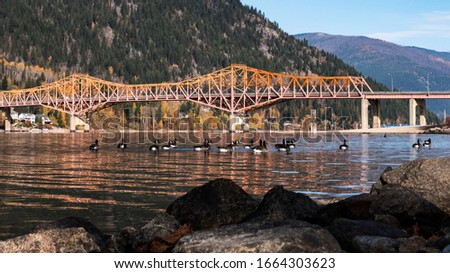 Canadian Goose Flock pass under industrial bridge in Northern America, with mountains in the background. Rocks surround the peaceful lake which mirrors the forest from above.