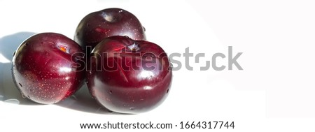 Plum Fruit tree with small juicy edible fruits, which have a large bone,. an oval fleshy fruit that is purple, reddish, or yellow when ripe and contains a flattish pointed pit. #1664317744