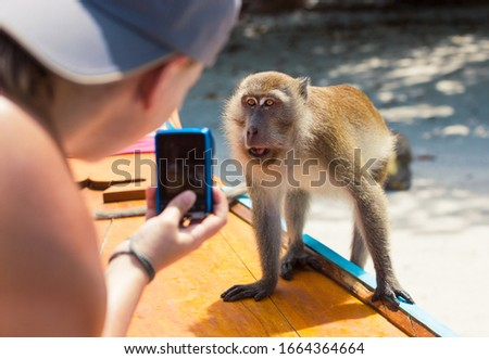 Girl takes a photo of monkey coming to a boat. Tourists take a photo with monkey during boat trip