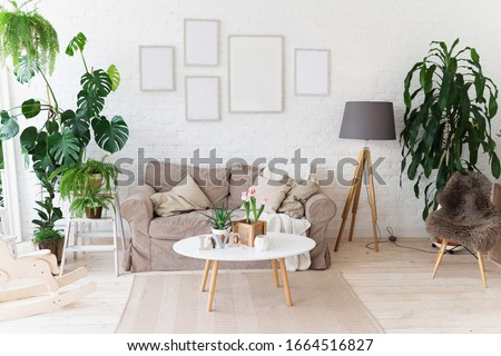 Spring or summer home interior. Scandinavian cozy light interior of living room. Cozy home concept. Plants in interiors. Real photo.