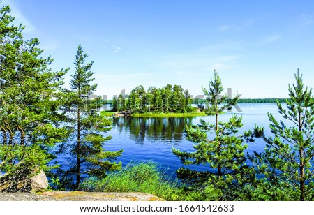 Summer green forest lake view. Forest lake view. Forest lake water #1664542633