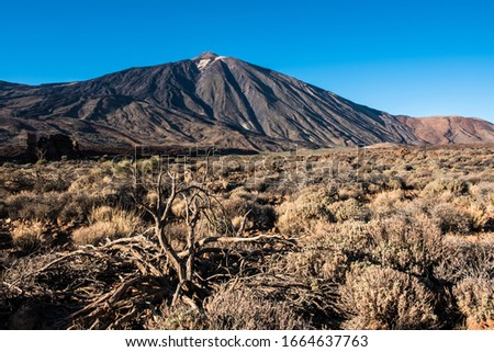A view of volcano Mount Teide, in Teide National Park, in Tenerife, the highest elevation in Spain #1664637763
