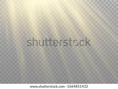 Vector transparent sunlight special lens flash light effect.front sun lens flash. Vector blur in the light of radiance. Element of decor. Horizontal stellar rays and searchlight. #1664851432