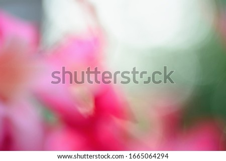 Abstract color light bokeh background, defocused background. #1665064294