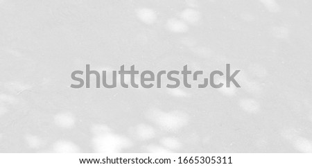 Background and Nature shadows. Rough gray shadows trees leaf on white wall. Abstract shadows nature concept blurred background. White and Black. Texture shadows.  #1665305311