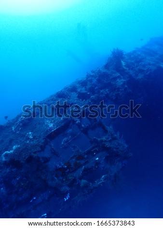 Bi Plane Dive site in Rabaul , Papua New Guinea. Wreck diving in PNG . #1665373843