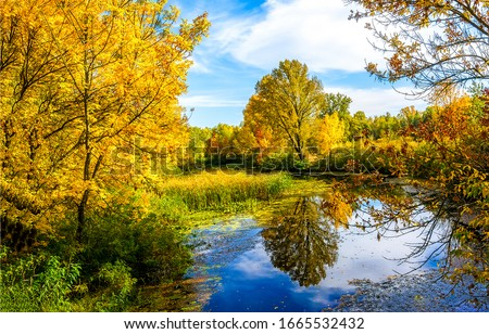 Autumn forest lake water view #1665532432
