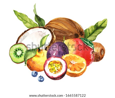 Watercolor exotic tropical passion fruit, coconut, kiwi, tangerine, mango illustration collection isolated on white background #1665587122