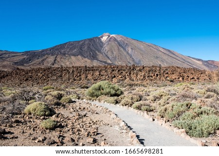 A view of volcano Mount Teide, in Teide National Park, in Tenerife, the highest elevation in Spain #1665698281