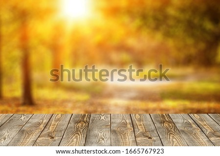 Empty wooden tabletop on a natural background.