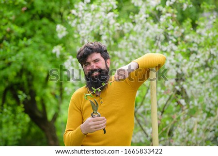 Spring. Smiling man in garden. Plants. Garden scissors. Gardening. Eco-farm. Work in garden. Bearded man with gardening tools. Work in garden. Gardener work. Farm. #1665833422