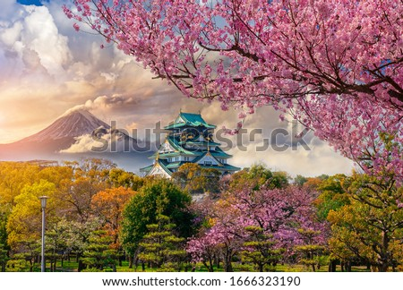 Osaka Castle and full cherry blossom, with Fuji mountain background, Japan #1666323190
