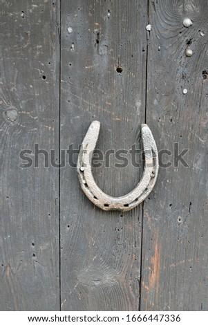 Old horseshoe on wooden door, vertical orientation #1666447336