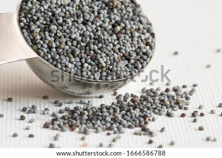 Poppy Seeds Spilled from a Teaspoon #1666586788