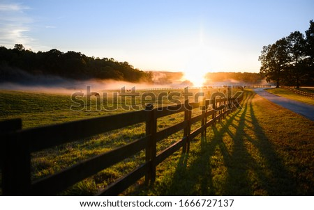 Beautiful Color Rural Landscape Nature Photo with Fence and Pathway Road Along Field Pasture Filled with Cows and Foggy Clouds at Sunset