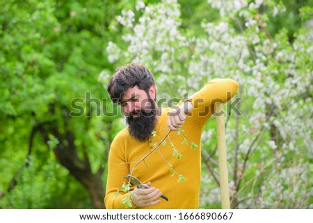 Spring time. Farmer working in garden. Smiling man in garden. Plants. Garden scissors. Gardening. Eco-farm. Work in garden. Bearded man with gardening tools. Gardener work. Farm. Man farmer. #1666890667