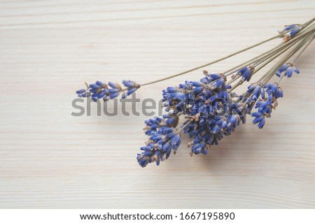 Bright lavander on wooden background with free space