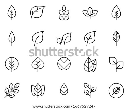 Leaf line icon set. Collection of vector symbol in trendy flat style on white background. Leaf sings for design.