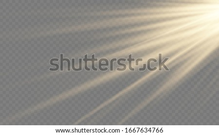 sun rays and glow light effect on transparent background. Vector illustration. #1667634766