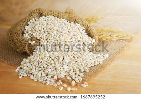Barley grain in wooden background Barley grain is raw material #1667695252